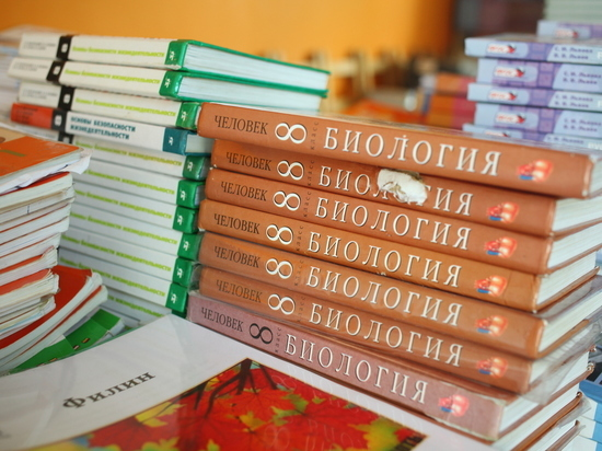 Нижегородским школьникам разрешили не ходить на учебу из-за мороза