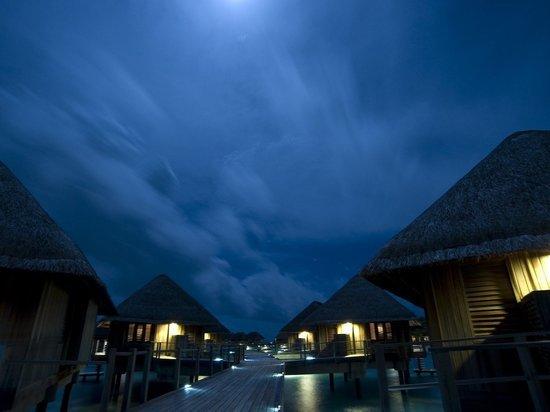 Мальдивские острова стали самым популярным местом отдыха россиян
