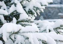 Воронежских жителей предупреждают о сильном снегопаде
