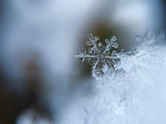 Гололед и снег прогнозируют синоптики в Псковской области 13 декабря
