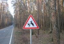 В 2021 году россиянам-автомобилистам подарят еще один дорожный знак