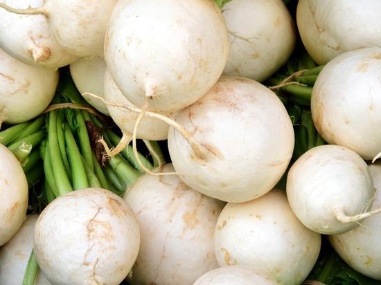 Волгоградцы узнали, какие три горьких продукта помогут сохранить здоровье