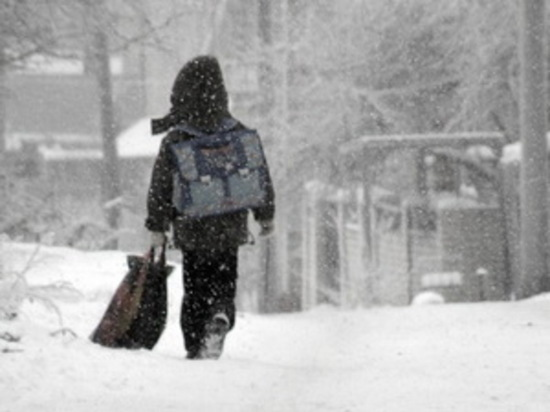 В школах Чебоксар из-за мороза отменили уроки для 1-8 классов