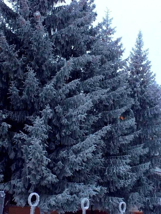 Саратовцев ждут 3 дня обильных снегопадов