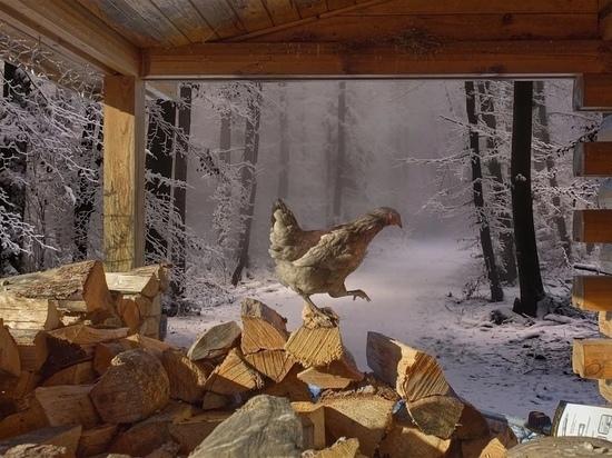 Что обязательно нужно сделать  15 января, в Куриный праздник