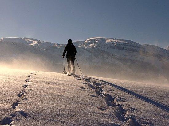 В Тюменской области ставится задача подготовить спортсменов-альпинистов
