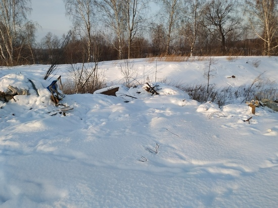 Две незаконные свалки обнаружили в Томской области