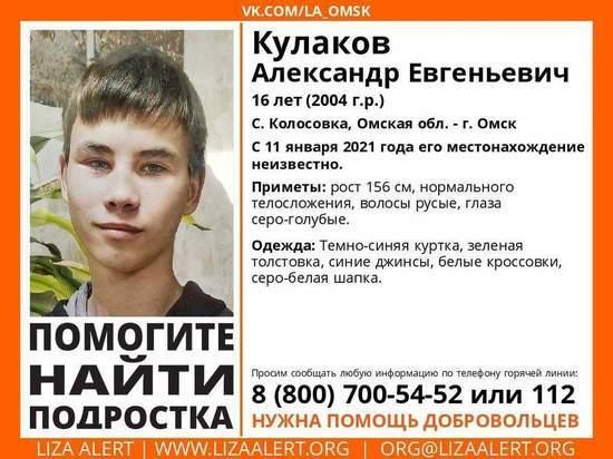 В Омской области ищут пропавшего подростка
