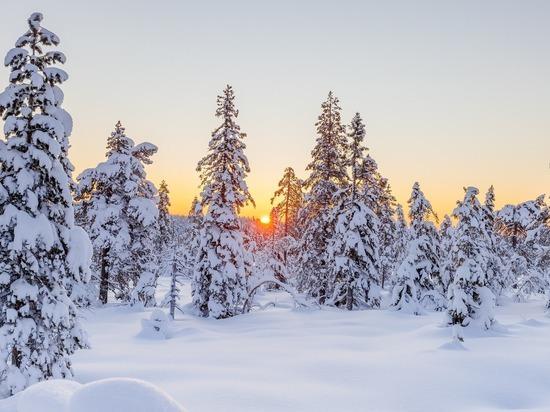 Резкое потепление приходит в Томскую область