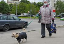 Россияне, рожденные позже 1972 года, обречены получать в старости настолько мизерную пенсию, что на нее вообще невозможно будет прожить