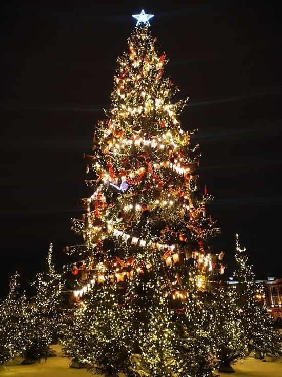 Главную елку Петербурга решили оставить на Дворцовой до конца января