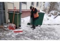 Несколько десятков дворников убирают снег в Пущино