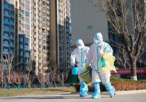 Миссию ВОЗ по расследованию коронавируса в Китае назвали