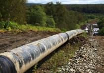 Депутаты украинской партии «Оппозиционная платформа - За жизнь» призвали исполнительную власть страны в будущем закупать «голубое топливо» исключительно на основе прямых договоров с «Газпромом»