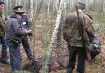 Больше 10 охотников лишили права стрелять в зверей в Хабаровском крае