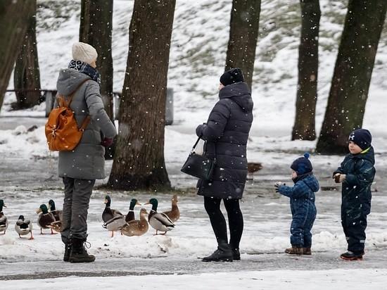 Морозы снова обрушатся на Псковскую область в эти выходные