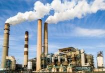 Чубайс раскритиковал действия властей по углеродному налогу