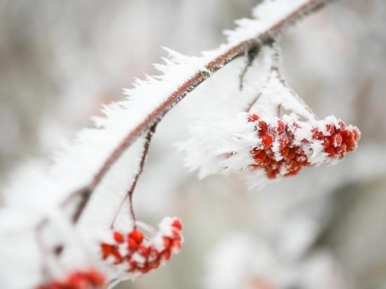В выходные Волгоград ждет ясная погода и мороз до -19°С