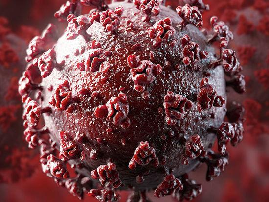 Около пяти тысяч упаковок мороженого оказались заражены коронавирусом в Китае