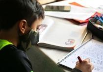 Германия: Исключение школьников, отказывающихся носить маски — неправомерно