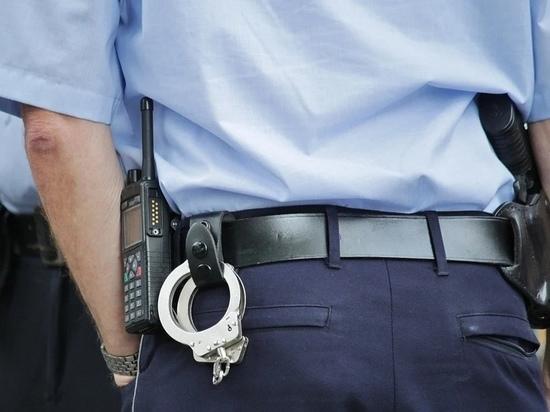 Псковские студенты помогут служащим полиции