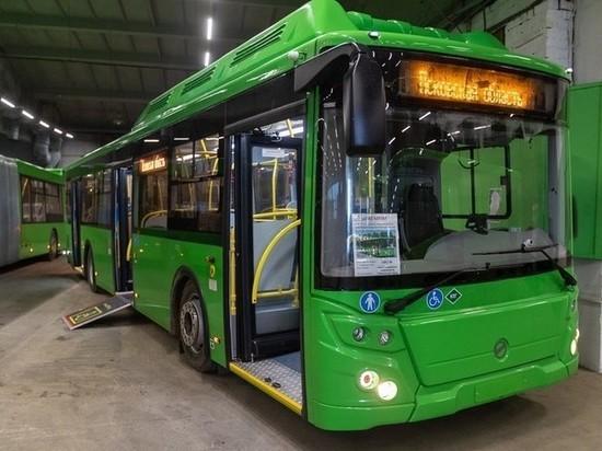 Срывы расписания псковских автобусов чиновник связал с изношенностью транспорта
