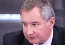 Рогозин показал фото таксы, которую «топили» при нем при эксперименте