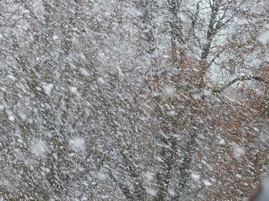 Погода на Крещение: на Колыме продолжатся метели