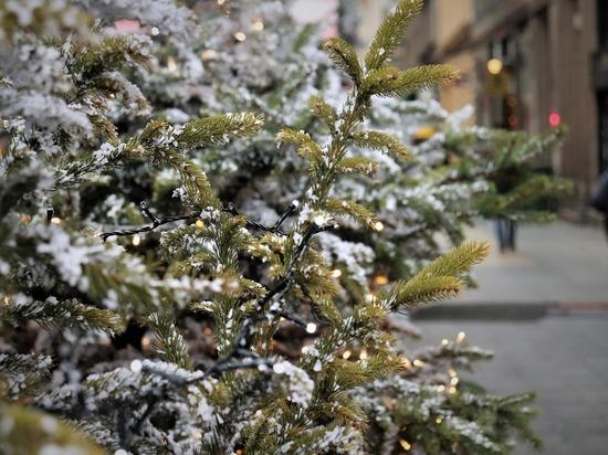 Главную елку в центре Томска уберут в середине февраля