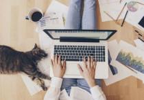 5 полезных девайсов для тех, кто работает дома