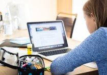 Германия: Центр занятости должен оплатить школьнице компьютер и принтер