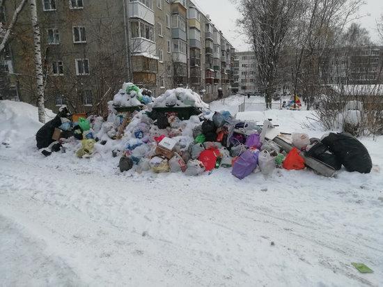 Тема мусора стала одним из главных лейтмотивов наступившего года для Кировской области