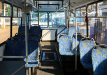 В Воронеже вновь ходит троллейбус №11