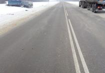 На трассе в Тамбовской области столкнулись две фуры