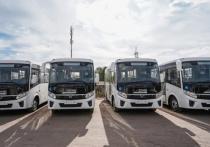 В Воронеже на маршруте №54 ПАЗы заменят пятью новыми автобусами