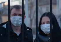 За последние сутки в Воронеже выявлено 389 новых заражений COVID-19