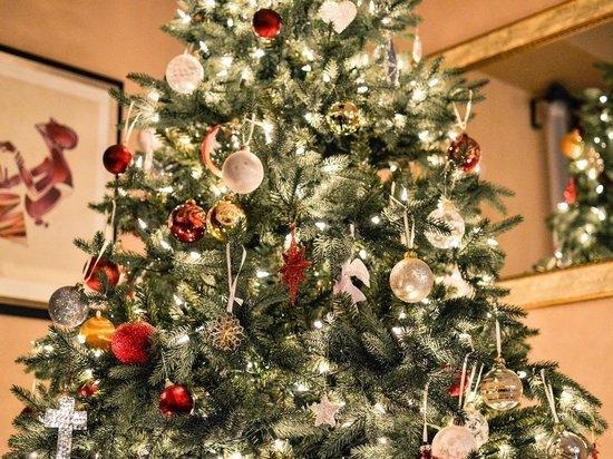 Ковид заставил четверть населения России экономить в новогодние праздники