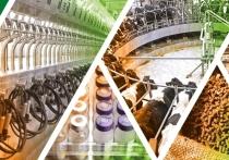 Костромские инновации: в Буйском районе вскоре заработает первая очередь полностью автоматизированного животноводческого комплекса