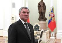 Володин призвал «передавать материалы» о втором гражданстве у депутатов