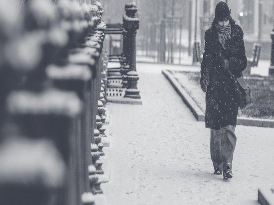 В Москве 21 января ожидается метель и туман
