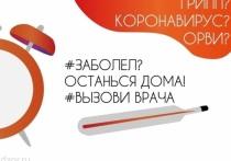 В Петербурге пандемия коронавируса полностью вытеснила грипп