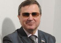 В условиях пандемии дистанционка была плохой, но вынужденной мерой, заявил 21 января первый зампред думского комитета по образованию Олег Смолин