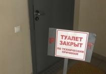 Теплые туалеты в двух школах забайкальского поселка стали арт-объектами