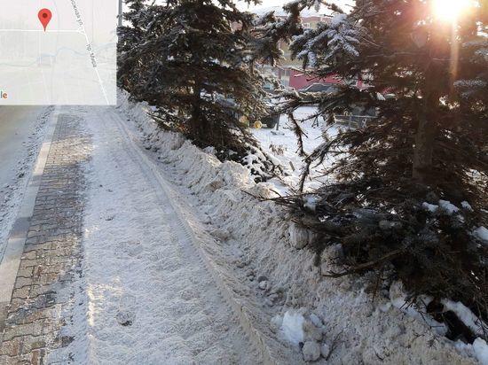 Дорожники повредили четыре голубые ели в Южно-Сахалинске