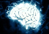 Привычки, которые сохранят молодость мозга даже в 100 лет