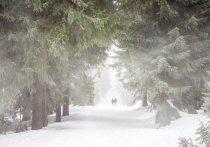 В Удмуртии 22 января будет облачно и снежно