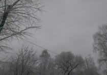 За выходные в Перми потеплеет