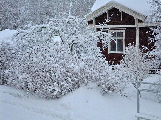 В Чебоксарском районе спасли обмороженного пенсионера