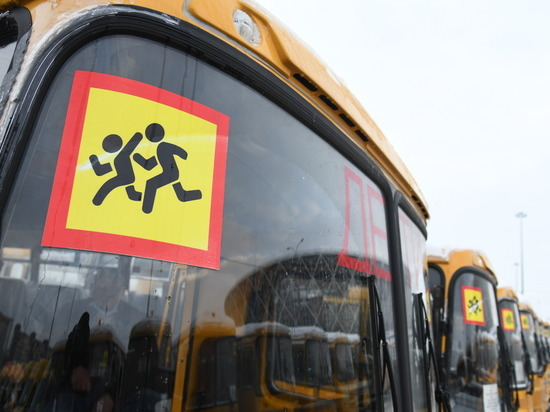 46 новых школьных автобусов получили районы Волгоградской области
