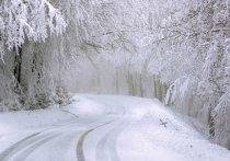 МЧС Удмуртии предупреждает о сильных снегопадах и гололеде в выходные